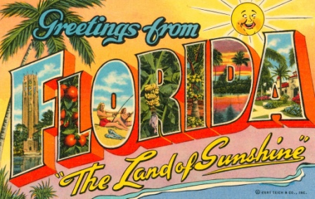 Quotes About Florida Florida Sr22 Insurance  Save Instantly